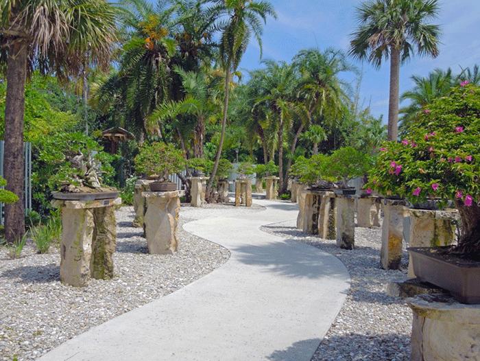 Heathcote Botanical Gardens: Kodak Moments In St. Lucie