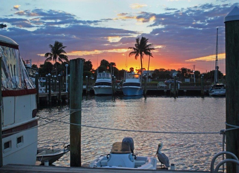 pelican-marina-sunset