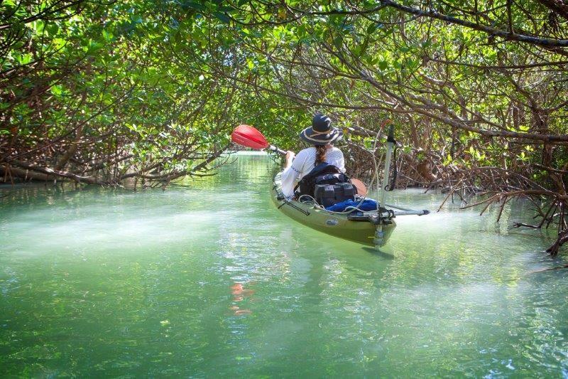 Motorized Kayak Adventures - Visit St  Lucie
