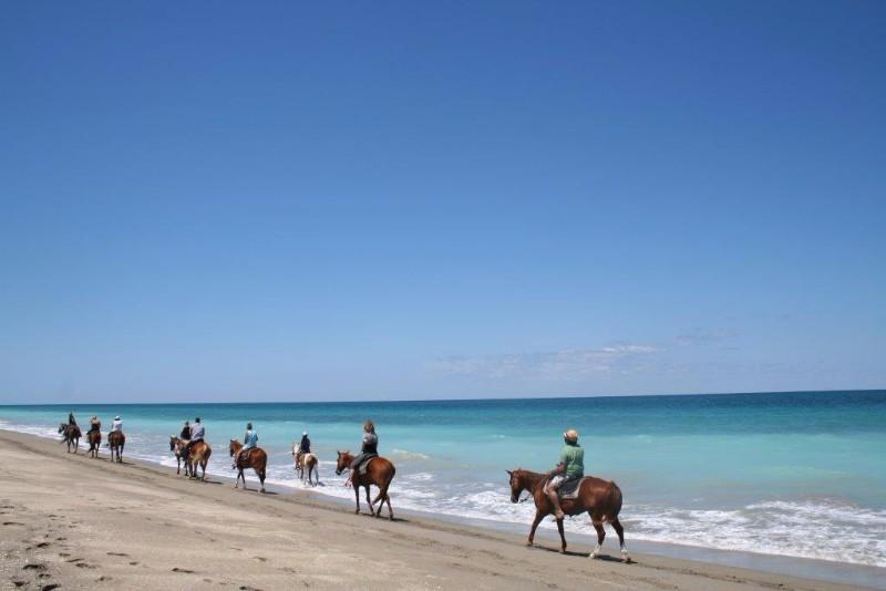 Beach-Tours-on-Horseback-106