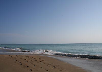Coconut Drive Beach