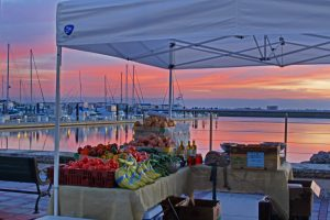 Farmer's Market - Ft. Pierce