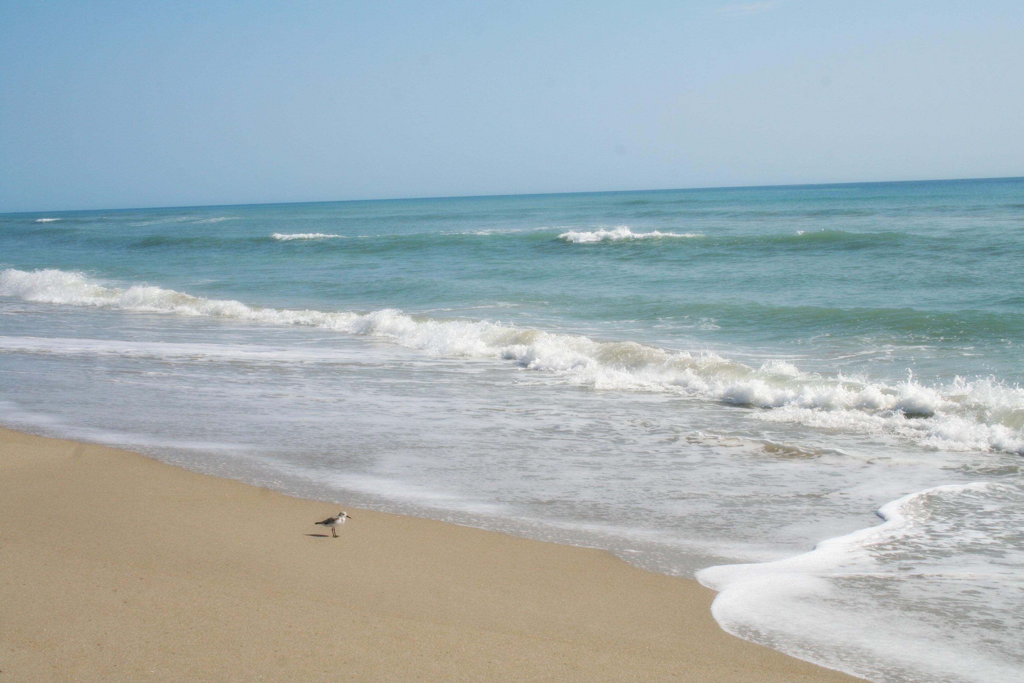 Herman S Bay Beach Visit St Lucie