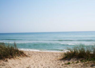Dollman Beach