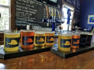 Brush & Brew - Sailfish Brewery
