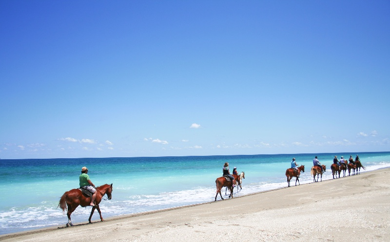 Beach-Tours-on-Horseback-020