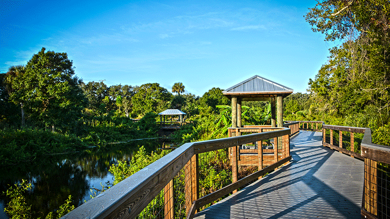 St. Lucie's 5 Must-Hikes