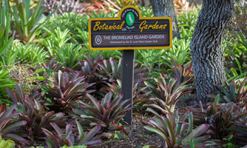 Top 10 reasons to visit the Botanical Gardens this Spring: