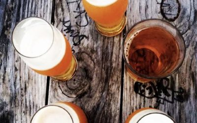 Top 5 Fun Facts about the TC Wine & Ale Trail