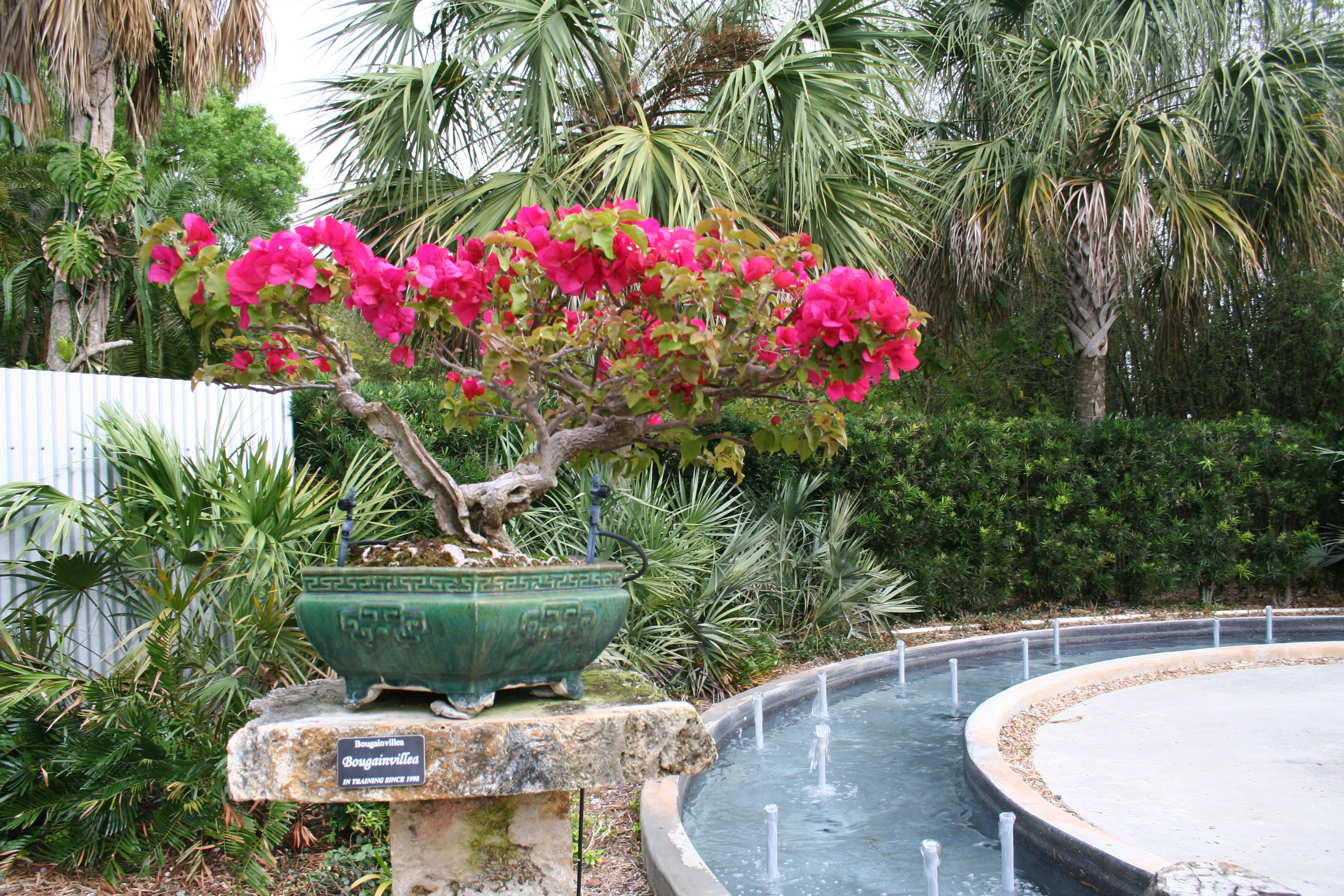 Heathcote Botanical Gardens: Feeling Festive For Fall