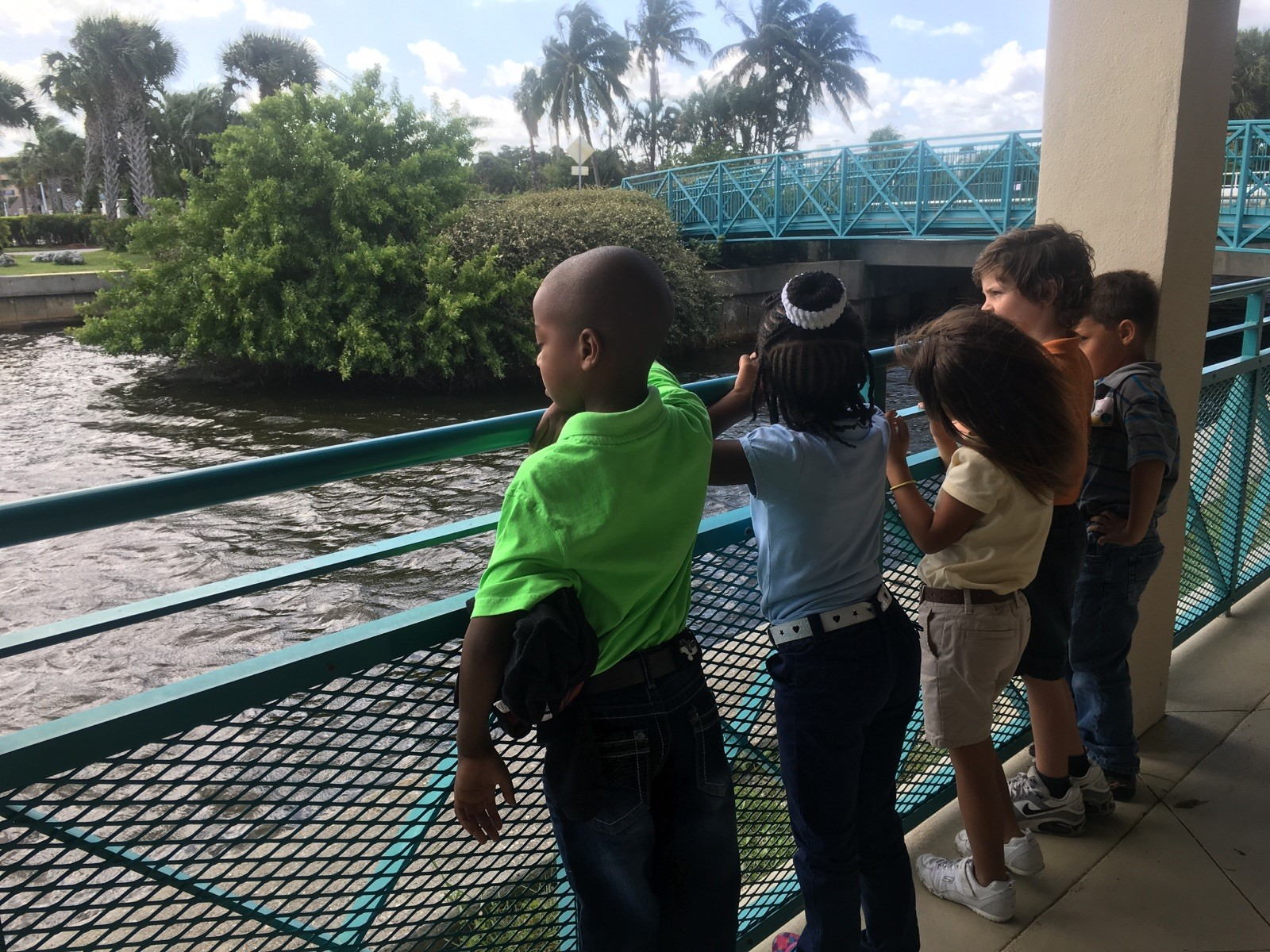 MA 9 kids looking for manatee