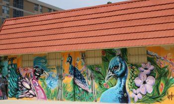 Mural Tour through St. Lucie