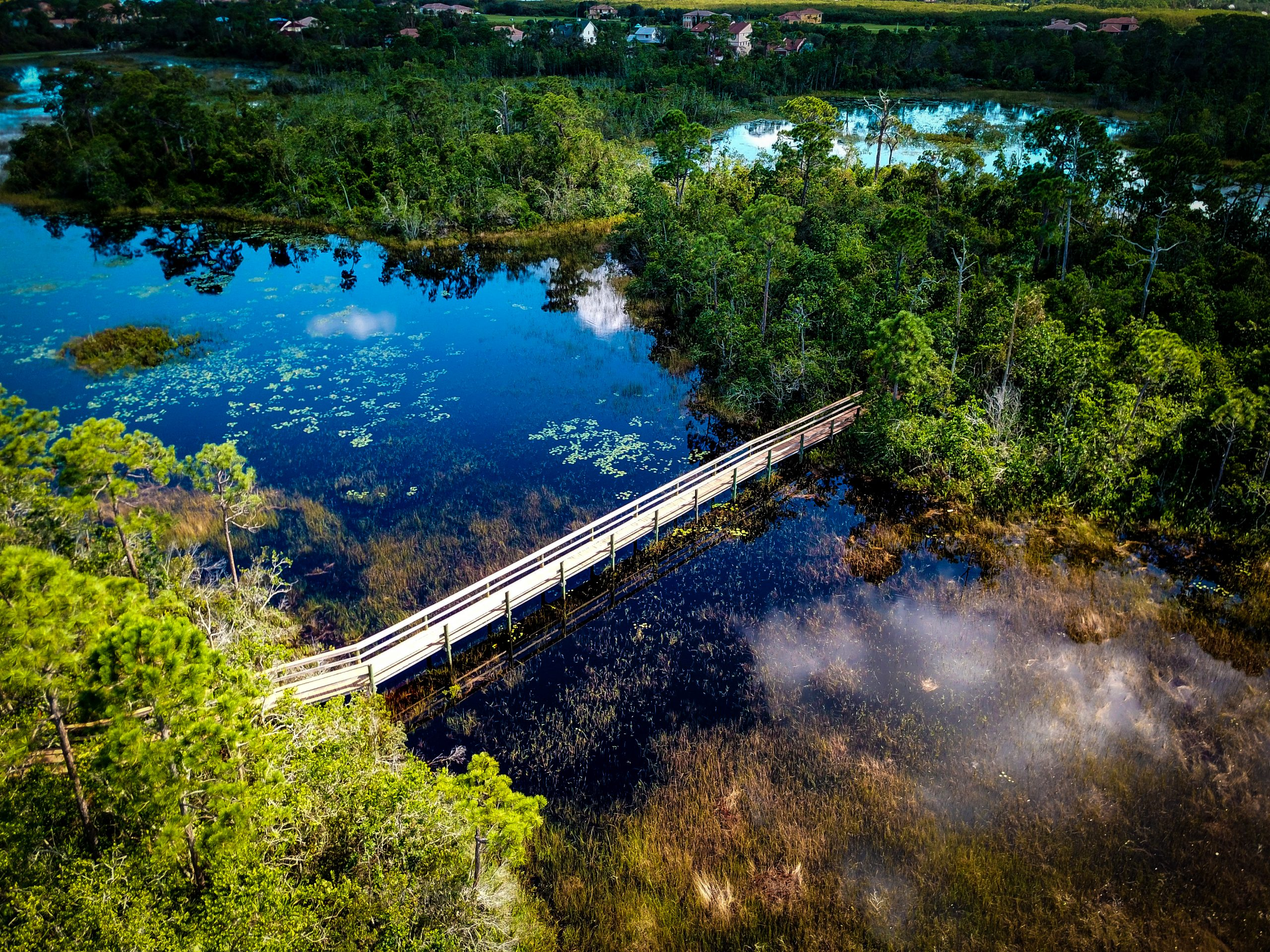 Aerial of bridge over water along a trail