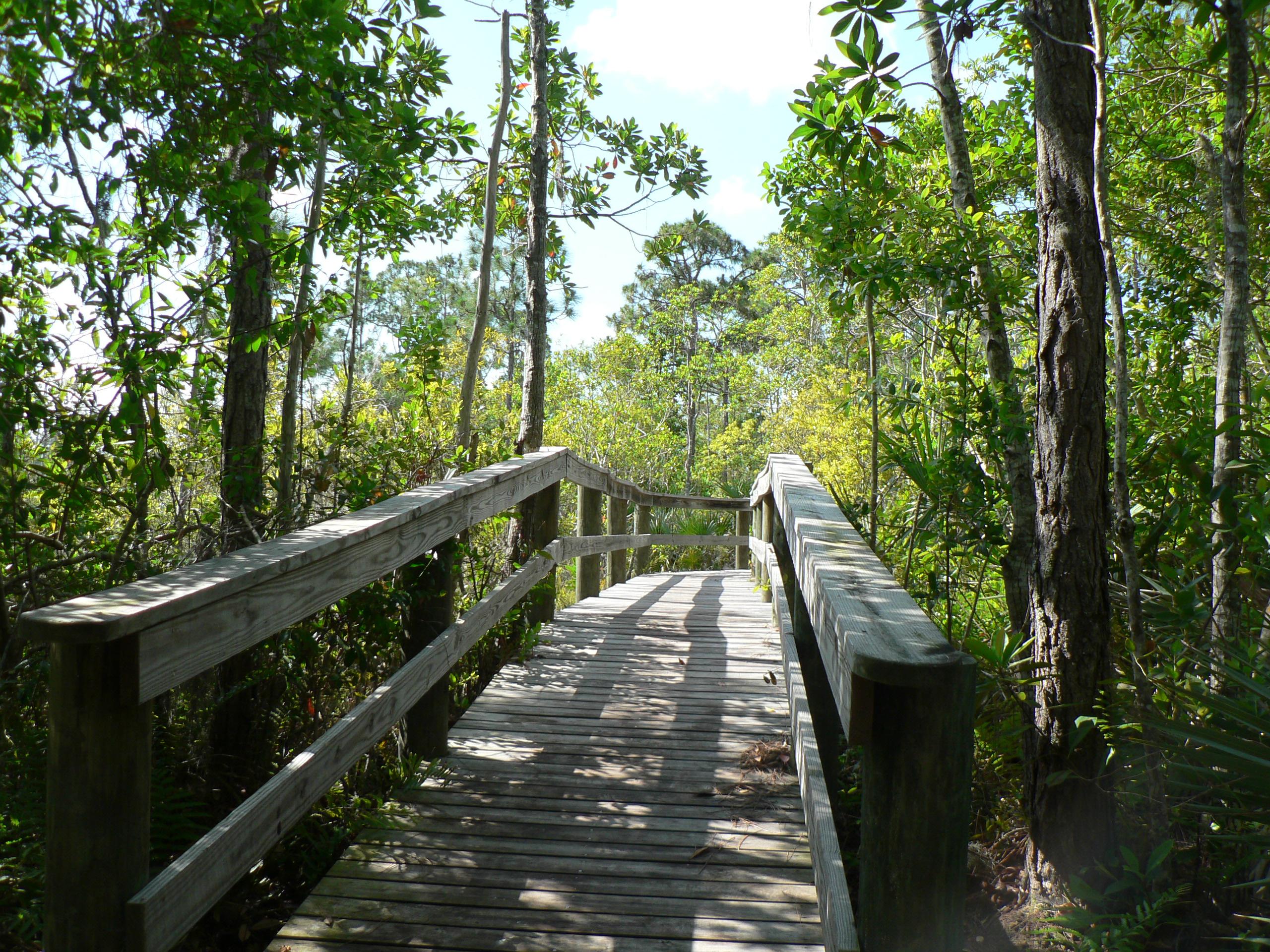 Spruce Bluff Preserve