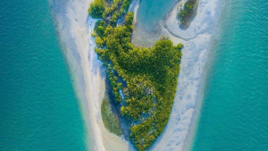 aerial view of island and water